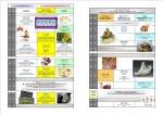 BOURGES & CHER NORD DIAB MODIF p8-9